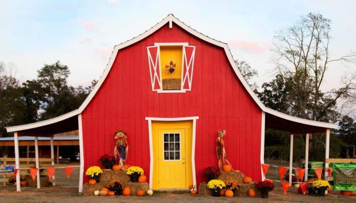 3. 4D Farm Corn Maze - Cullman, AL