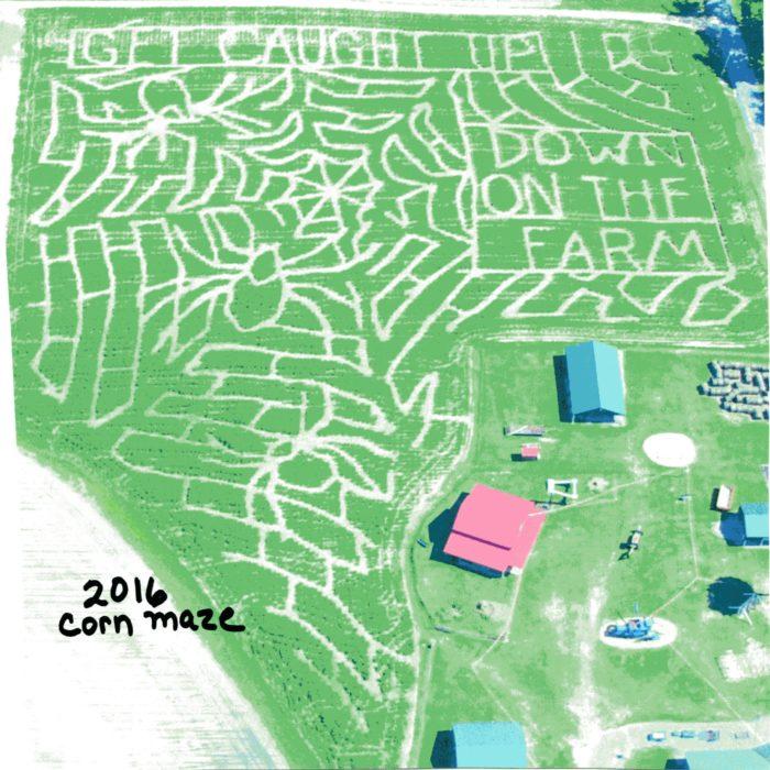 Corn Maze 6.6
