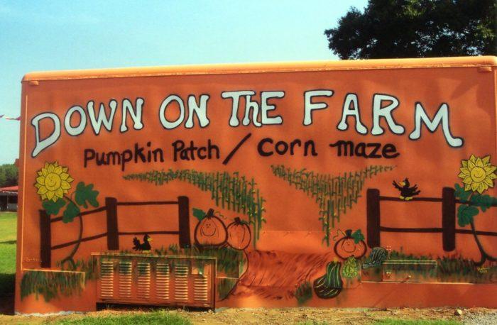 """6. """"Down on the Farm"""" Corn Maze - Rainsville, AL"""