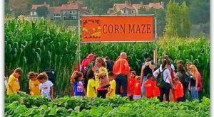 Get Lost In These 7 Awesome Corn Mazes In Southern California This Fall