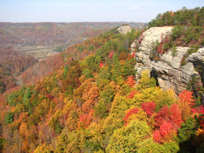 Eventually you'll encounter a rocky climb as you make your way to the ridge line. Get ready for one of the most spectacular views in all of Red River Gorge.