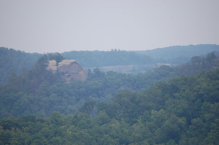 Like Auxier Ridge, this is one of the most stunning views in Red River Gorge.