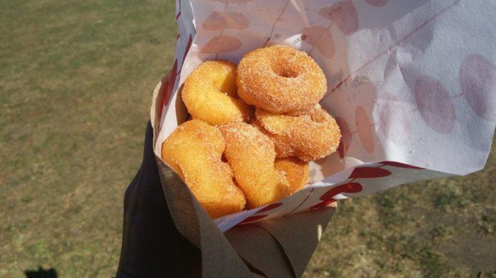 Donuts-Flea