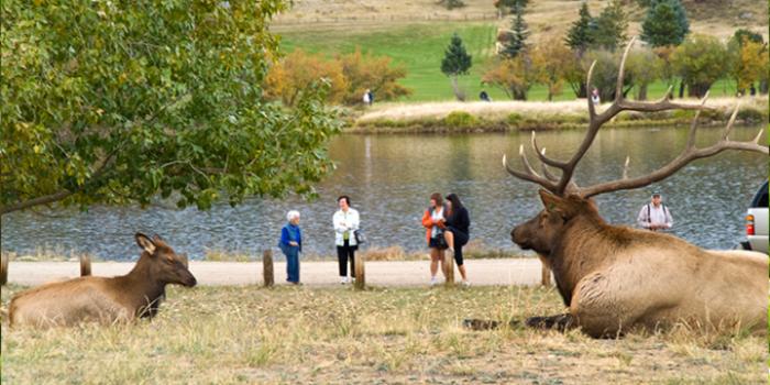 5. Elk Fest at Estes Park, Oct. 1 & 2