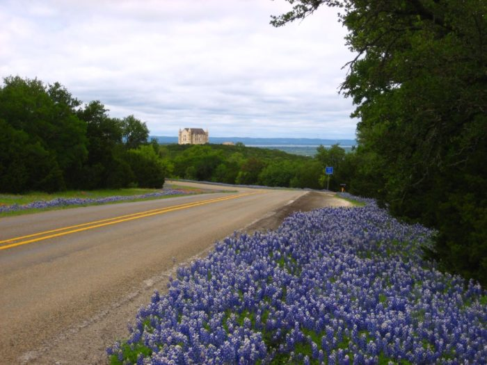 Bluebonnets and princess castles-- nothing beats the sight.