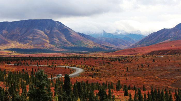 3. The tundra will turn fiery red.