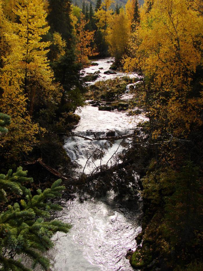 7. Russian River Falls – Cooper Landing