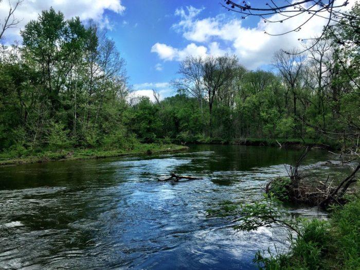 2. Lawrence Creek Trail