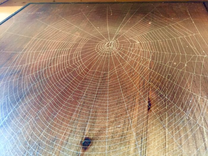Winters on the farm are spent preparing wood for the plaques to mount the webs.
