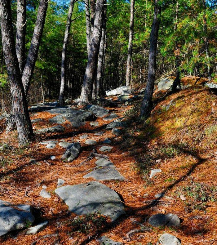 Hike 12