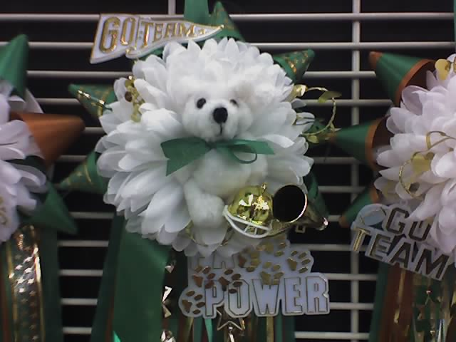 2. Homecoming mums weighed more than your overloaded backpack.