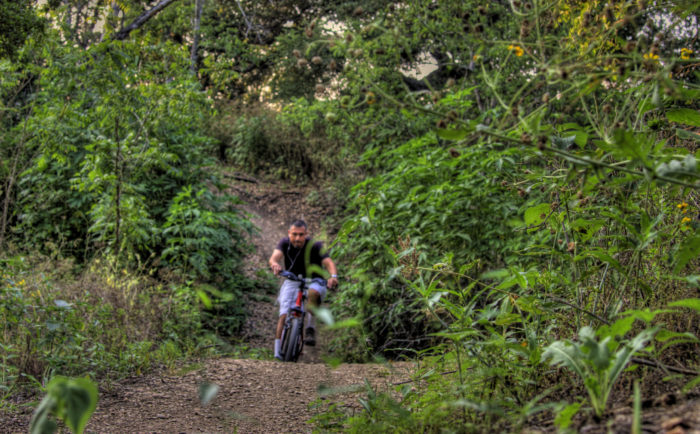 The trail is perfect for hiking or biking.