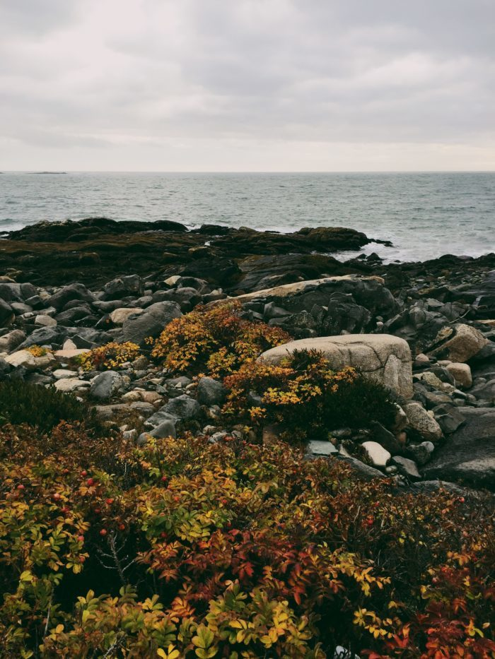 12. Lane's Island Preserve, Vinalhaven