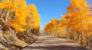 You'll Want To Take This Gorgeous Fall Foliage Road Trip Outside Of Denver…And Soon