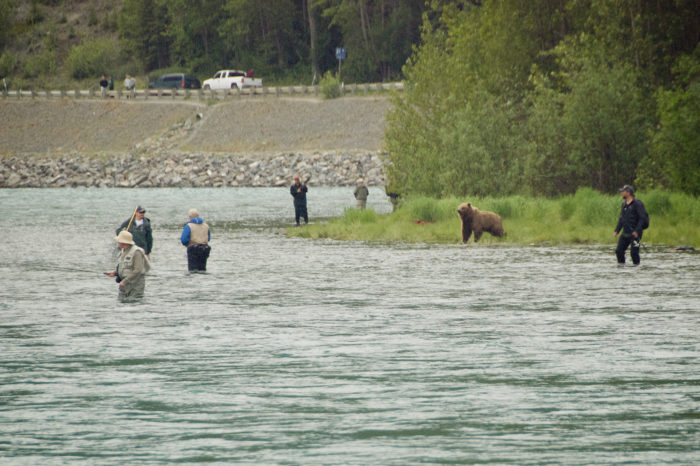 14. Experience what it's like to lose your best fishing spot to a massive grizzly bear.