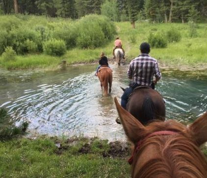 An abundance of stables, horseback outfitters, and trail guides allow visitors to explore the scenery up close and personal as well.