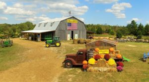 These 7 Charming Pumpkin Patches In Tennessee Are Picture Perfect For A Fall Day