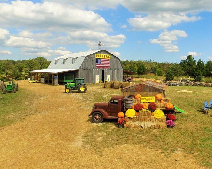 2. Keller's Corny Country - Dickson