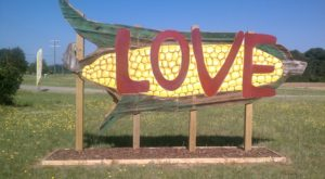 Get Lost In These 6 Awesome Corn Mazes In Virginia This Fall