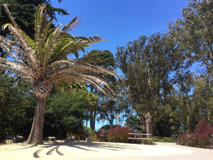 3. Lafayette Park: Pacific Heights
