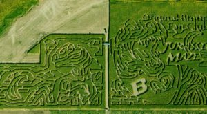 Get Lost In These 13 Awesome Corn Mazes In Idaho This Fall