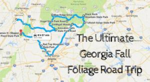 Take This Gorgeous Fall Foliage Road Trip To See Georgia Like Never Before