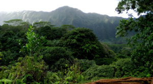 This Just Might Be The Most Beautiful Hike In All Of Hawaii