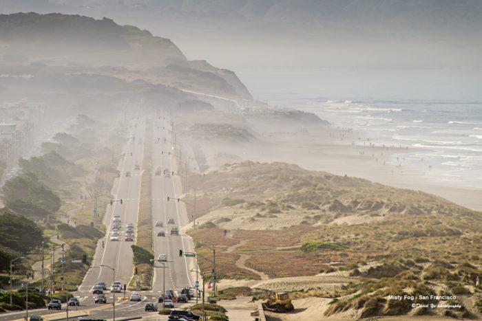 7. Ocean Beach & Seal Rocks