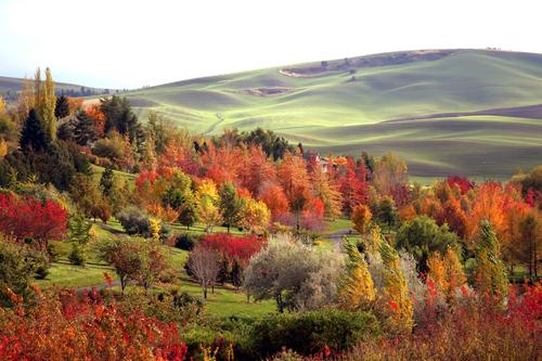 8. University of Idaho Arboretum and Botanical Garden