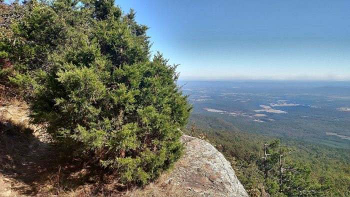 10. Benefield Loop Trail (Mount Magazine State Park)
