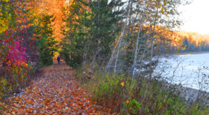 10 Glorious Waterfront Trails In Idaho To Take On A Fall Day