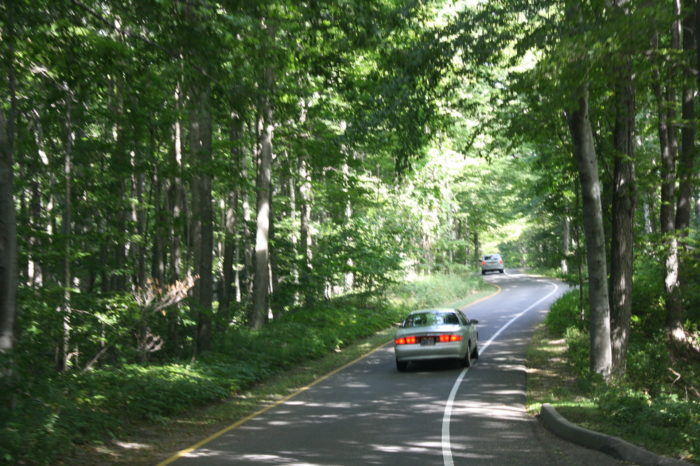 Pierce_Stocking_Scenic_Drive_Woods