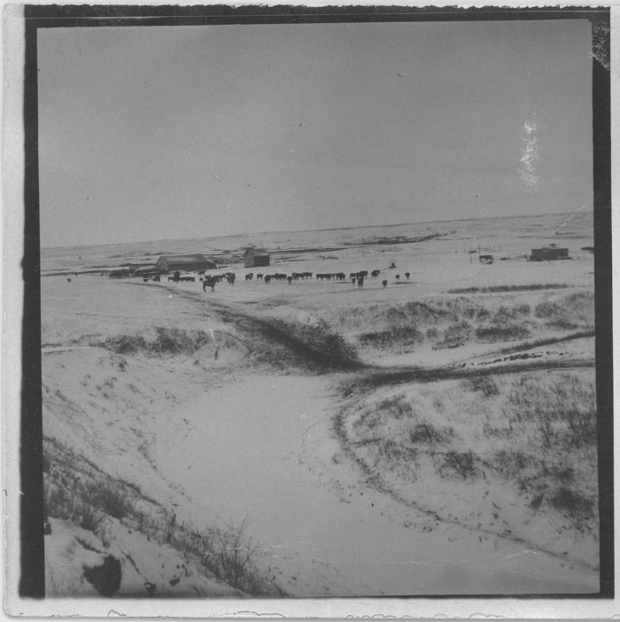 4. View of a ranch near Devils Lake in 1891.