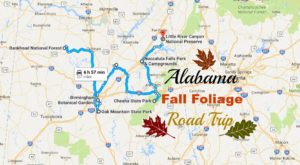 Take This Gorgeous Fall Foliage Road Trip To See Alabama Like Never Before