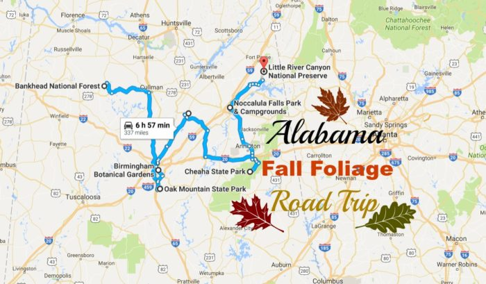 Road Trip Fall Foliage