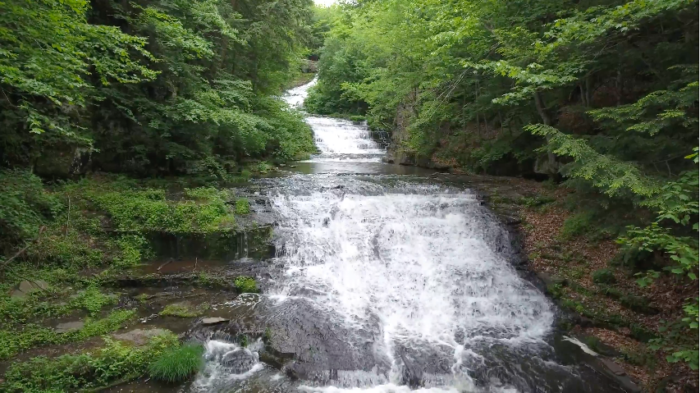 1. Spend the day outside at one of our nature preserves, like the Huyck Preserve!
