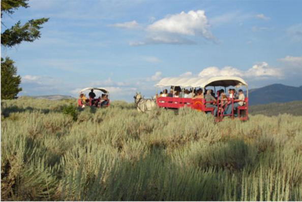 Grand Teton Covered Wagon