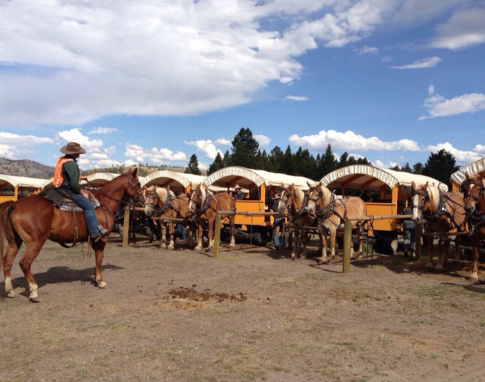 Yellowstone Old West Cookout