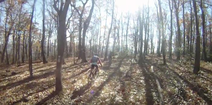 8. Chestnut Ridge Trail (Roanoke)
