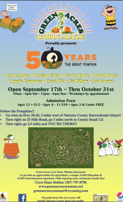 10. The Great Pumpkin Festival