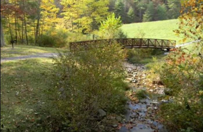 3. Braley's Pond Picnic Area