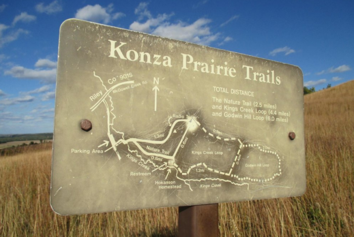 The Konza Prairie is made up of several unique ecosystems including shrub, forest, and even claypan.