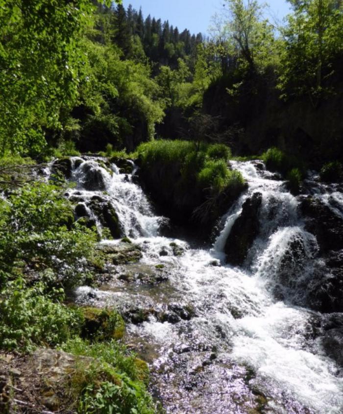 The springs create these falls, located near Savoy, South Dakota.