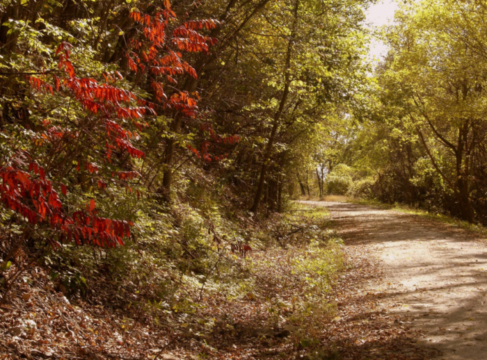 The best time to take on the Katy Trail is during autumn. The fall foliage and crisp weather turn it into a perfect day.