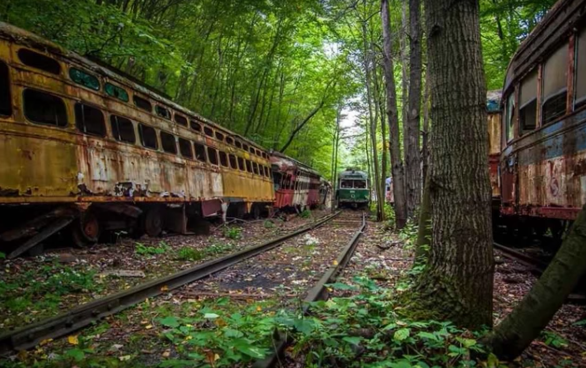 There S An Abandoned Train Graveyard In Saluda North Carolina