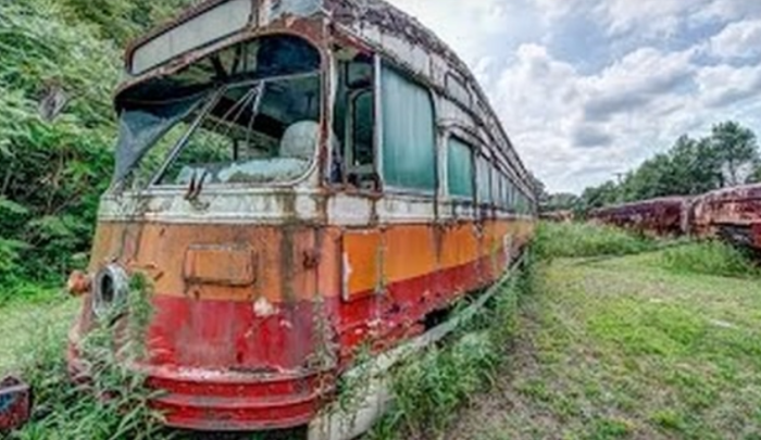 Many are decayed, rusted, and succumbing to the surrounding nature.