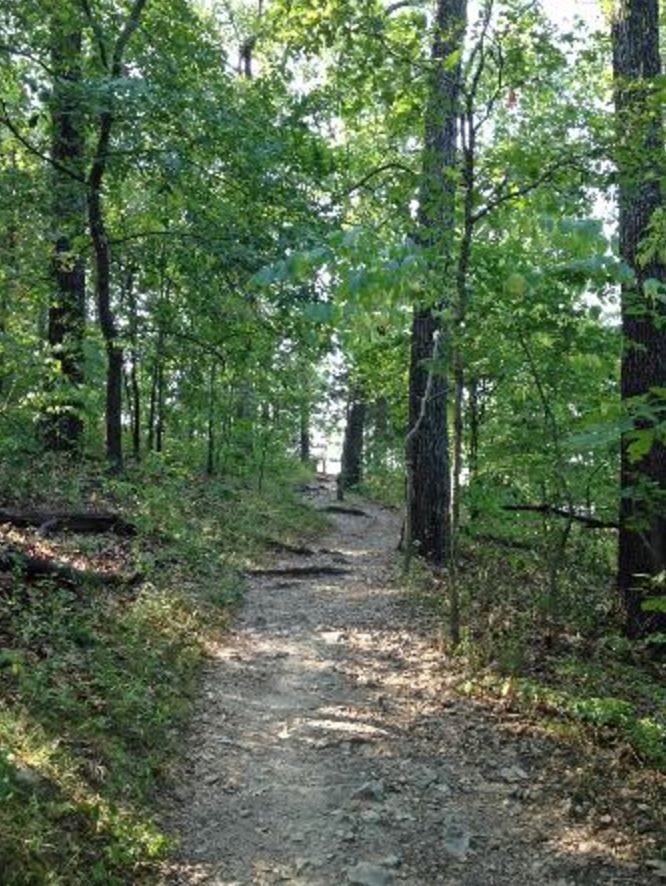 The 3-mile round trip trail starts through a forested hillside before turning uphill to the bluffs.