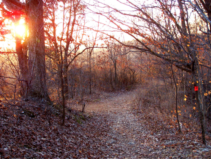 This trail is especially beautiful to see during the fall when the leaves have changed colors.