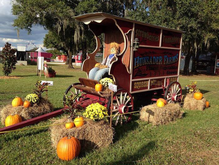 2. Hunsader Farms Pumpkin Festival, Bradenton