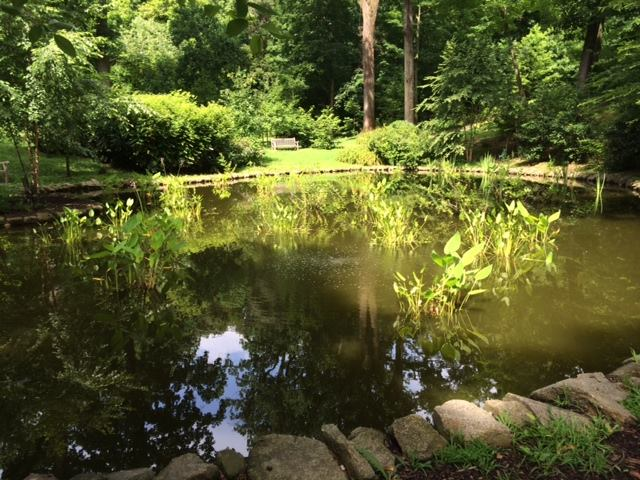 The Tregaron Conservancy began restoring the property to its former beauty. In 2009, the property opened up to the pubic once again.